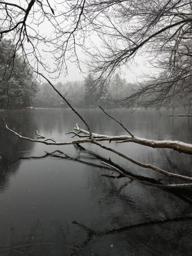 Spencer Pond